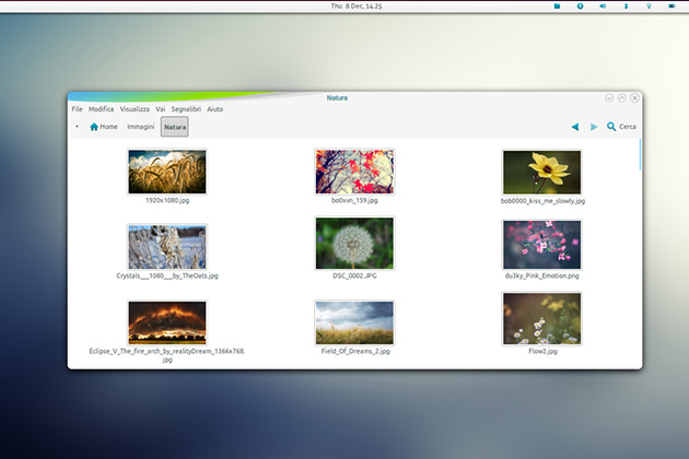 a-new-start Theme linux